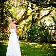 Strapless Alencon Lace Gown